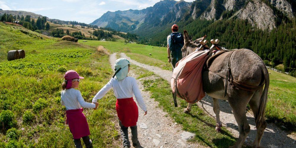 Randonnée en âne à Arvieux en Queyras