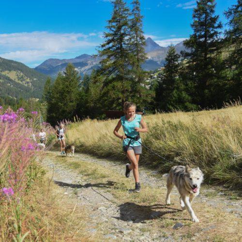 Cani-trail à Arvieux en Queyras